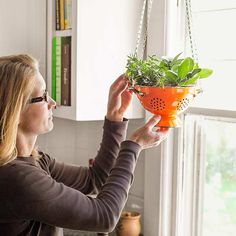 Colander lined with landscape fabric and filled with potting soil to create an indoor herb garden.