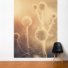Botanical Wall Murals Pictures - AllPosters.ca