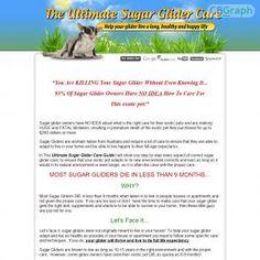 [GET] Download Ultimate Sugar Glider Care Guide Bonus! : http://inoii.com/go.php?target=sugarglidr