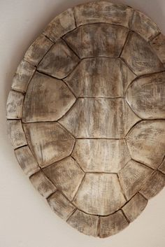 My Sweet Savannah: ~thrifty thursday~{tortoise shell makeover} -- an idea for making sea turtle shells for programs -- hmm. Sea Turtle Shell, Turtle Crafts, Carapace, Tortoises, Patterns In Nature, Natural Texture, Tortoise Shell, Sea Creatures, Coastal Decor