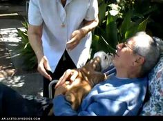 Papa Gets A Puppy – Video - This brought tears to my eyes!