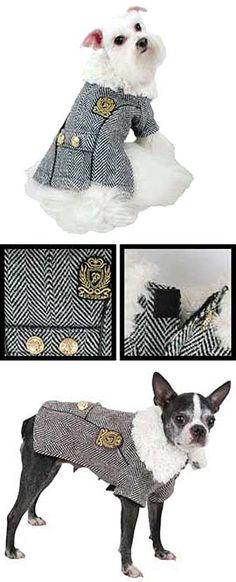 elegantní zimní kabát pro psa