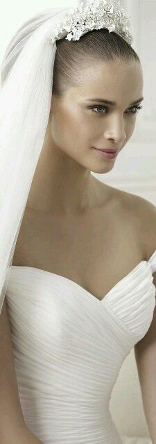 [The veil is perfect with the gown, and vice versa.]  ♥