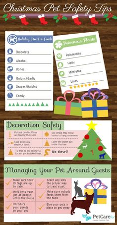 Christmas Pet Safety Tips - Tipsographic
