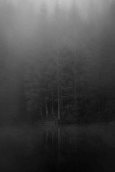 x something about misty, foggy photo's. wonder what… Dark Photography, Landscape Photography, Wedding Photography, Images Gif, 3d Fantasy, Dark Places, Nocturne, Belle Photo, Dark Art