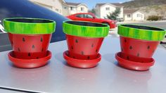 Hand Painted 3 Watermelon Flower Pots set of 3 with