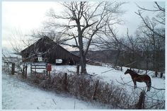 Winter Horse, Winter Road, Rustic Wood, Tapestry, Barns, Cabin, Snow, Horses, House Styles