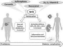 Natural Nrf2 activators in diabetes
