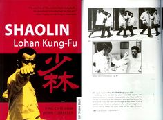Martial Arts Books, Shaolin Kung Fu, Book Art, Movies, Movie Posters, Image, Films, Film Poster, Cinema