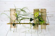 Gregor Lersch in Flower Show (Kiev, Ukraine, Ikebana Arrangements, Floral Arrangements, Gregor Lersch, Flora Design, Small Greenhouse, Art Competitions, High Art, Flower Show, Contemporary Design