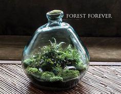 https://www.facebook.com/forestforever.art/photos/a.1502557673317426.1073741831.1502167386689788/1682346322005226/?type=3