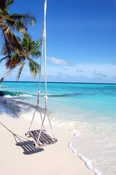 Beautiful swing from a tree down on the sand at the beach so coastal pretty like this x