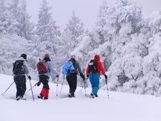 Berg, Mount Everest, Snow, Mountains, Nature, Travel, Outdoor, Snowshoe, Woman