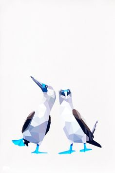 Geometric illustration Bluefooted booby Bird by TinyKiwiCreations