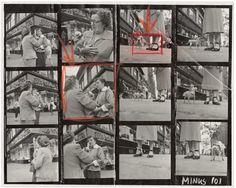 Elliott Erwitt - Chihuahua, New York City, 1946. for Sale | Artspace