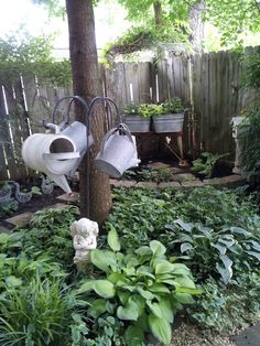 Shade garden love