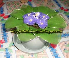 violeta meia de seda