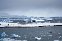 Antarctica.  I particularly loved the blue icebergs.