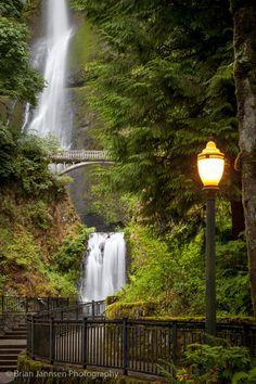 Multnomah Falls along the Columbia River Gorge, Oregon USA. © Brian Jannsen Photography