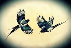 "Image result for magpie ""watercolor tattoo"""