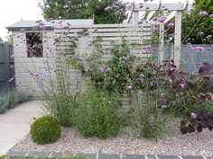 New small garden design painted shed Fencing trellis garden ideas mauve lilac grey - Garden Tips and Tricks Small Garden Fence, Gravel Garden, Garden Shrubs, Backyard Fences, Small Garden Design, Garden Trellis, Garden Fencing, Garden Landscaping, Bamboo Fencing