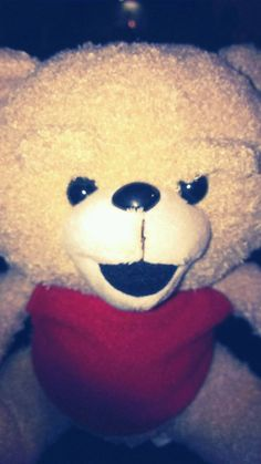 "Ted 8"" Teddy Bear Plush from Ted The Movie/Red Apron .. So Soft! #TED   Ebay ID  debpark94_attic   Ebay ID  tigerllc24   for more wonderful gifts!"
