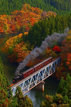 Colored leaves and Steam, JR Tadami-Line, Fukushima, Japan