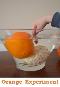 Super simple science experiments are great after school activities! Try this orange science experiment, which takes the usual sink or float experiment to the next level. Orange Science Experiment O… Preschool Science Activities, Mad Science, Stem Science, Kindergarten Science, Science Classroom, Teaching Science, Science Education, Stem Preschool, Preschool Education
