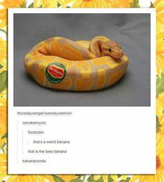 Bananaconda...