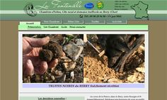La Fontenille   Chambres d'hôtes  gîte et production de truffe #Lapan     - Lapan, Cher, Centre