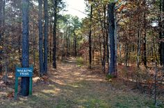 Walking Trail in Veterans Park