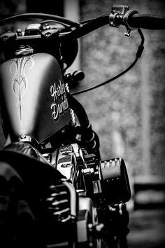 ~Harley Davidson~