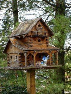 Houten huis bouwen - a birdie's house