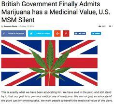 Finally admit #marijuana . http://ift.tt/2emHDB9   #cannabissativa #cannabis#marijuana#popquiz#fun#happy#cannabiscommunity #weed#happy420#stonner#smartstoner#medicalmarijuana #follow#thegimmicks#like#me#legalizeit#ganja#legal#thc#cbd #cbdoil#plant#herbs#organic