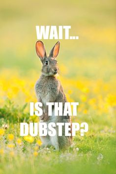 HAPPY EASTER FROM DUBSTEP WHORE!