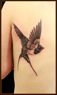 swallow tat by Ping Pong