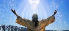 La ley de Salvación ..........: ¿QUE ES LA SAL DE LA TIERRA?