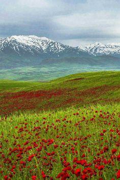 Broujerd,Iran