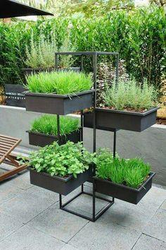 Herbs - Garden Decoration