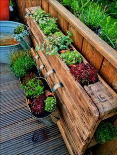 летний сад на балконе фото