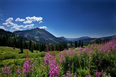 View from Paradise by Hansrico.com - Rick Louie, via 500px