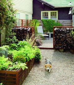 Small and lawnless. Landscape designer Shirley Watts is on a mission to green up her gardens. That doesn't mean she packs them with foliage. Watts is committed to green solutions that benefit the environment by preserving resources and by recycling materials.   Find out more about this tiny backyard Sunset garden