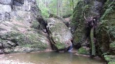 Water, Plants, Outdoor, Hungary, Art, Gripe Water, Outdoors, Art Background, Kunst