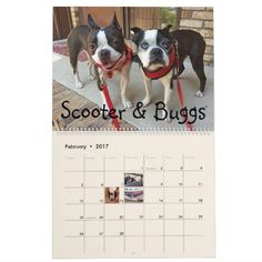 NEBTR 2017 Calendar 50% off Right now in Zazzle store!