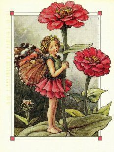 Fairy Life.