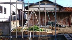 新たにつるバラ用フェンスを作ってます・・・☆3年後の庭がどうなっているのかを想像しながら。(笑) - 週末は「イングリッシュガーデン?」で・・・(ブログ版)