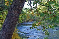 Seneca Rocks in West Virginia by Jill Skaggs