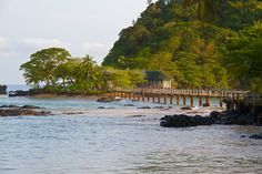 Turtles nesting, dolphins, Humpbacks whales and different native birds can be seen in the island.