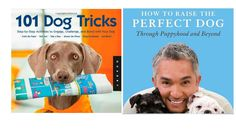 Top 5 Best Dog Training Books Reviews Best Puppy Training Book