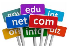 Domain Name (Www.Your_Business.Com) - 1 Month